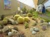 Výstava květin v roce 2007